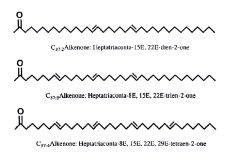 Dieses Bild zeigt den schematischen Aufbau von Alkenonketten
